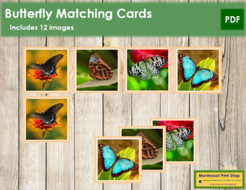 Butterfly Photo Matching Cards