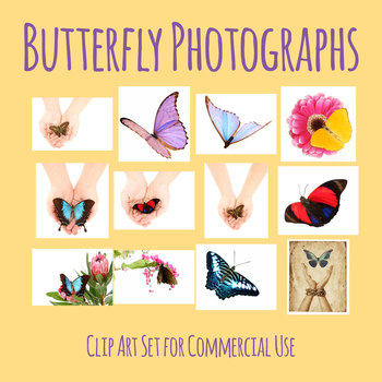 Butterfly Photo / Photograph Clip Art Set for Commercial Use