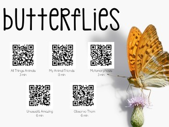 Butterfly QR Codes: Explore & Research