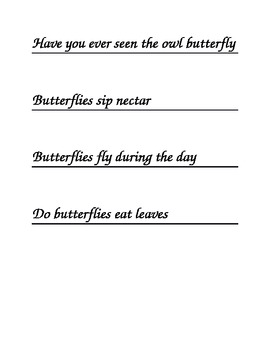 Butterfly Question or Sentence