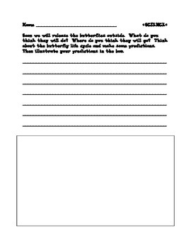 Butterfly Release Writing activity