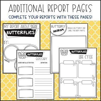 Butterfly Informative Writing Reports