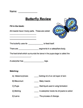 Butterfly Review