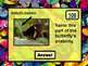 Butterfly Review Jeopardy PowerPoint Game