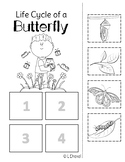 Butterfly Sequencing