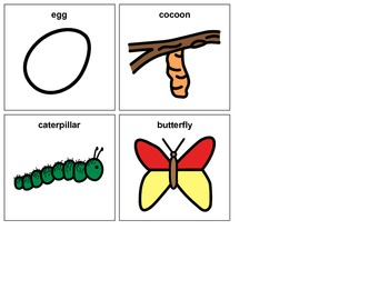 Butterfly Sequencing Cards