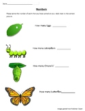 Butterfly Sorting and Matching activities