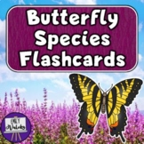Butterfly Species Flashcards
