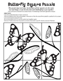 Butterfly Square Puzzle