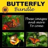 Butterfly Photo Bundle
