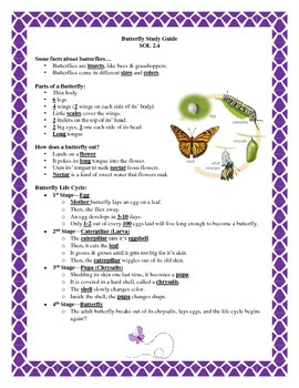 Butterfly Study Guide