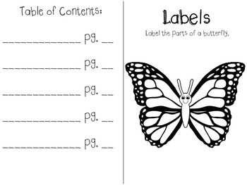 Butterfly Text Features Book (FREEBIE)