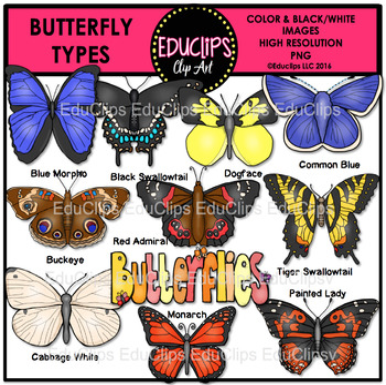 Butterfly Types Clip Art Bundle {Educlips Clipart}