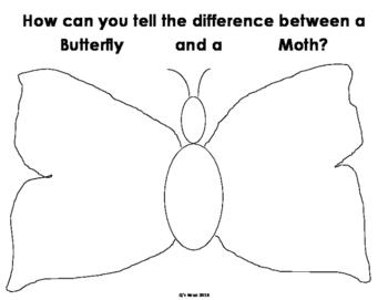 Butterfly Venn Diagram