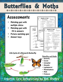 Butterfly Vocabulary Assessment