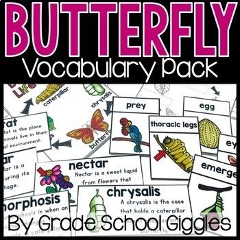 Butterfly Vocabulary Cards