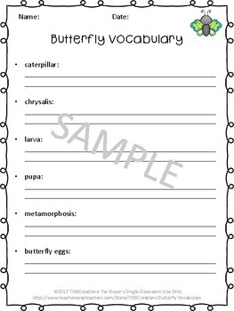 Butterfly Life Cycle Activities Vocabulary Cards and Worksheets