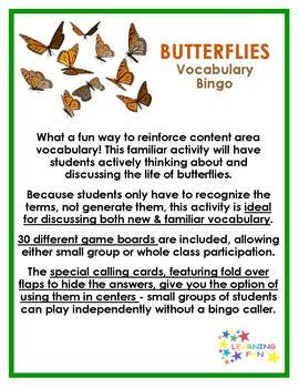 Butterfly Vocabulary bingo