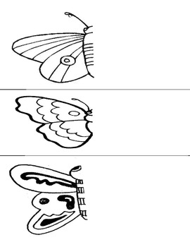 Butterfly Worksheets