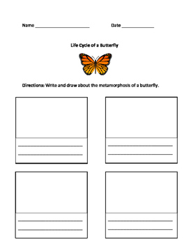 Butterfly Writing