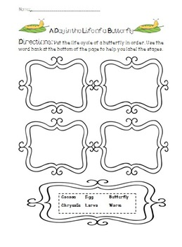 Butterfly Writing Differentiated