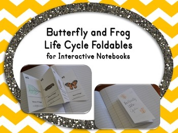 Butterfly and Frog Life Cycles for Interactive Notebooks