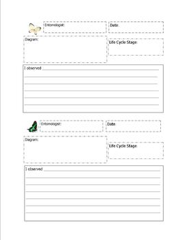 Butterfly and Ladybug Observation Form