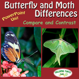 Butterfly and Moth Differences PowerPoint
