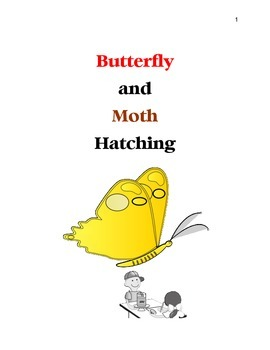 Butterfly and Moth Hatching