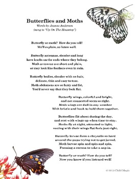 Butterfly and Moth Song Poster