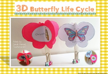 Butterfly life Cycle Craft Activity ( 3D)