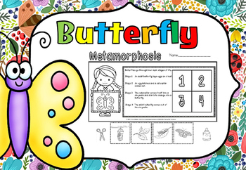 Butterfly life cycle(free)