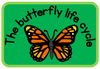 Butterfly life cycle book (simple version)