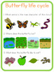 Butterfly life cycle circle time questions