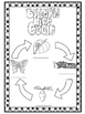 Butterfly life cycle journal