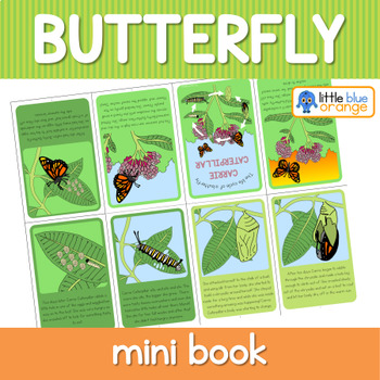 Butterfly  life cycle mini book