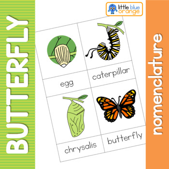 Butterfly life cycle nomenclature cards