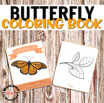 Butterfly life cycle printables and parts of a butterfly