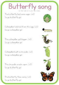 Butterfly life cycle song