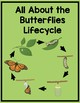 Butterfly lifecycle Journal and Book