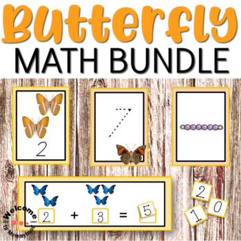 Butterfly numbers and counting bundle