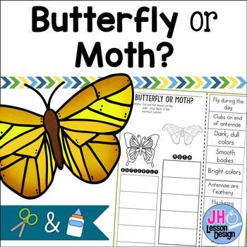 Butterfly or Moth? Cut and Paste Sorting Activity