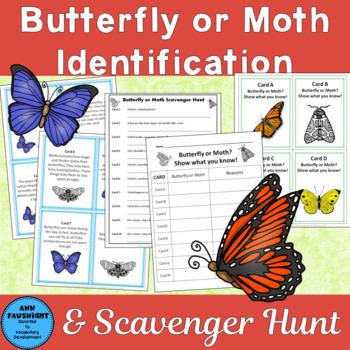 Butterfly or Moth Scavenger Hunt