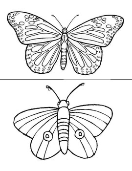 Butterfly pictures and mazes