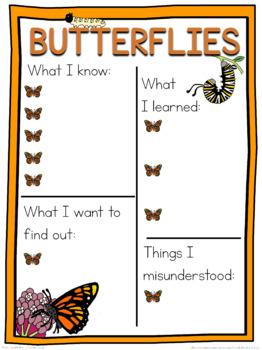 Butterfly schema  worksheet