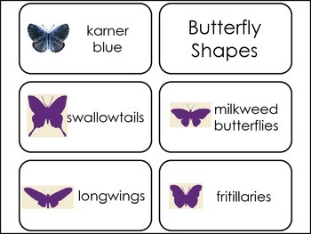 Butterfly themed Picture Word Flash Cards.
