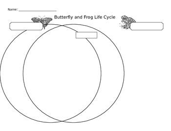 Butterfly vs. Frog Life Cycle Venn Diagram