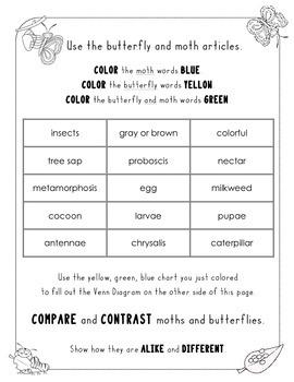 Butterfly vs. Moth