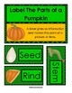 My Pumpkin Observations Booklet (png. files)