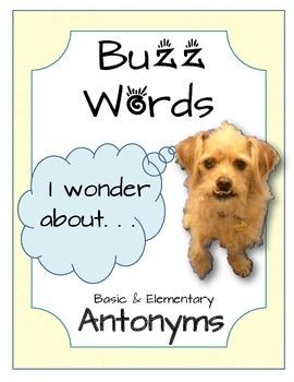 BuzzWords: Antonyms